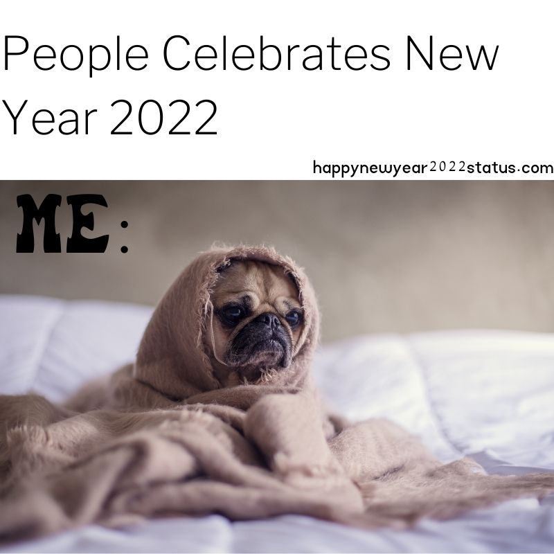 Funny Happy New Year Memes 2022